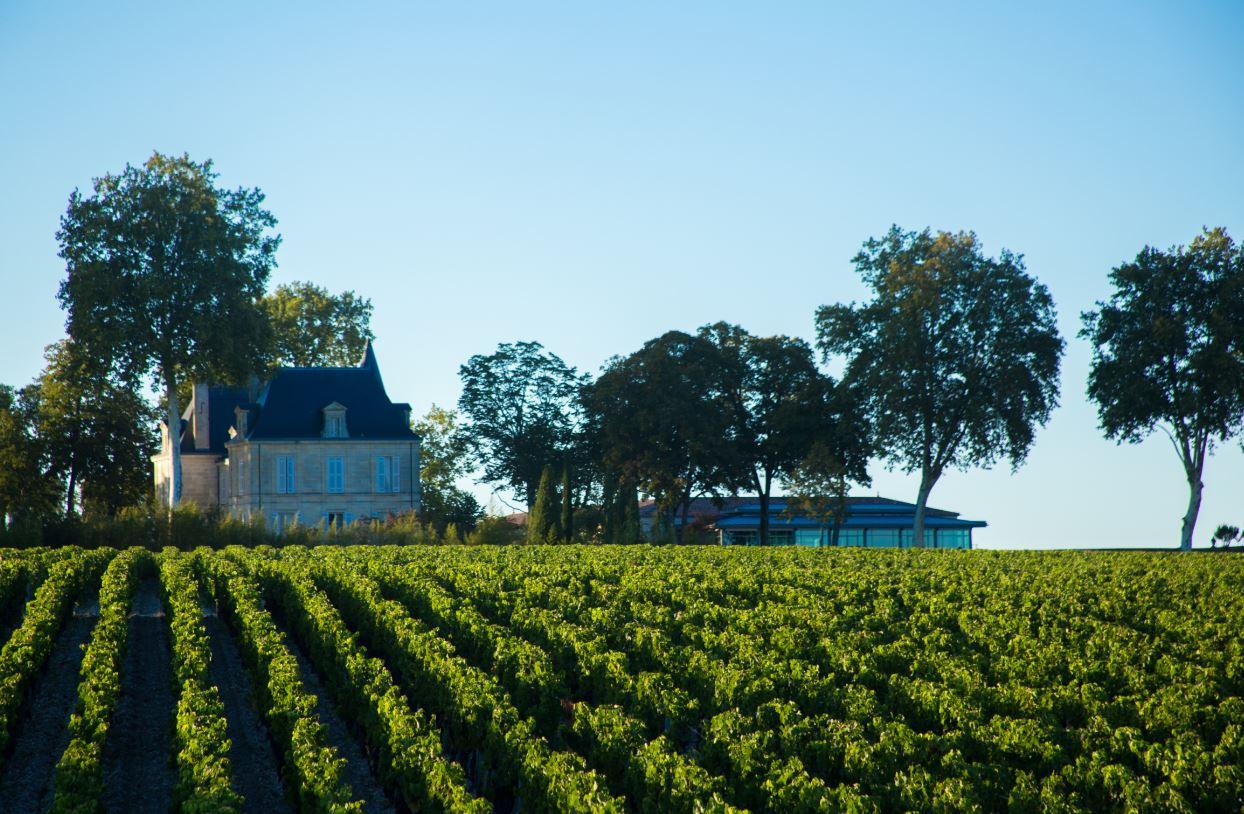 Mehr als ein Rotwein aus Bordeaux
